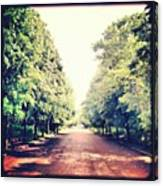 #alexandrapalace #alexandrapark #park Canvas Print