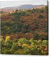 Algonquin In Autumn Canvas Print