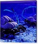Alien Life Form, Artwork Canvas Print