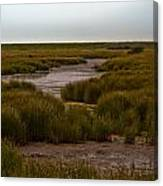 All Hallows Marshes Canvas Print
