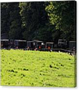 All The Amish Buggies Canvas Print