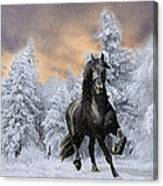 Allegro Coming Home Canvas Print