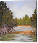 Along The Hillsboro Canvas Print