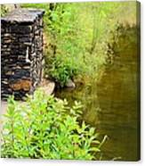 Along The Shallow Water Canvas Print
