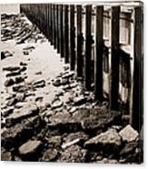Along The Wall Canvas Print