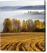 Altai Foothills Canvas Print