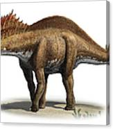Amargasaurus Cazaui, A Prehistoric Era Canvas Print