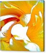 Amarulo Canvas Print