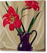 Amaryllis Lillies In A Dark Glass Jug Canvas Print