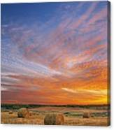 Amazing Sunset Over Pasture Canvas Print