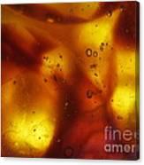 Amber Colors Canvas Print