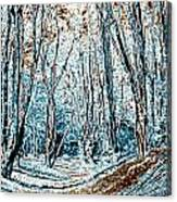 Ambresbury Banks Canvas Print