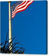 American Flag Flying Over The Palms Canvas Print