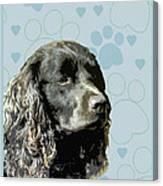 American Water Spaniel Canvas Print