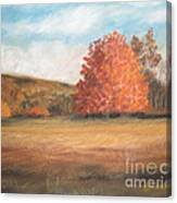 Amid The Tranquil Presence Of Change Canvas Print