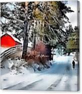 Amish Boy On Bike Canvas Print