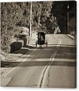 Amish Buggy - Lancaster County Pa Canvas Print