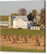 Amish Countryside Canvas Print