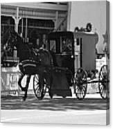 Amish Transportation Canvas Print