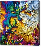 Ampicillin Lm Canvas Print
