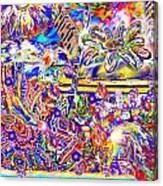 Amplitude IIi Canvas Print