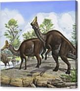 Amurosaurus Riabinini Dinosaurs Grazing Canvas Print
