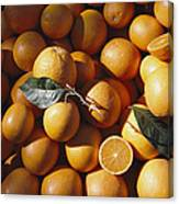 An Abundance Of Oranges Canvas Print