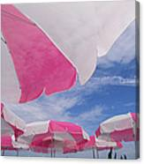 An Arrangement Of Pink And White Beach Canvas Print