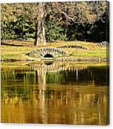 An Autumn Bridge Canvas Print