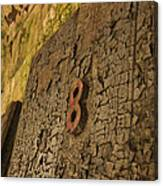 An Old Door At A Prison Canvas Print