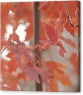 An Orange Fall Tree With Words Canvas Print