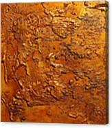Ancient Treasure 2 Canvas Print