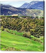 Andalusia Landscape Canvas Print