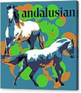 Andalusian Canvas Print