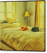 Andi's Cats Canvas Print