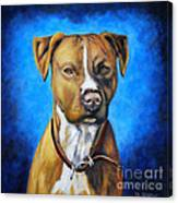 American Staffordshire Terrier Dog Painting Canvas Print