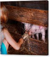 Animal - Pig - Feeding Piglets  Canvas Print