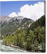 Animas River Colorado Canvas Print