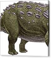 Ankylosaurus Magniventris Canvas Print