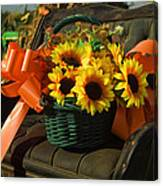 Antique Buggy And Sunflowers Canvas Print