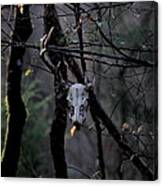 Antlers - Skull - In The Air Canvas Print