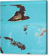 Ap13 Canvas Print