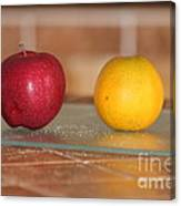 Apple And Orange Canvas Print