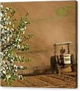 Apple Blossoms And Farmer On Tractor Canvas Print