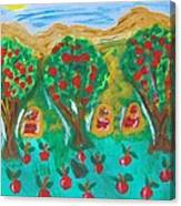 Apple Orchard Canvas Print