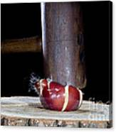 Apple Smashed With Mallet Canvas Print