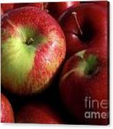 Apples For Sale Canvas Print