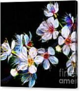 April All Aglow Canvas Print