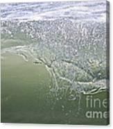 Aqua Action Canvas Print