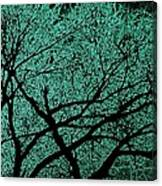 Aqua Scrub Canvas Print